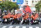 第43回・よさこい鳴子踊り・チーム☆利ゑ蔵